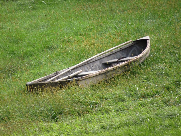 Old boat in grass