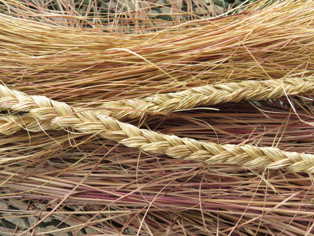 Braided prairie dropseed grass