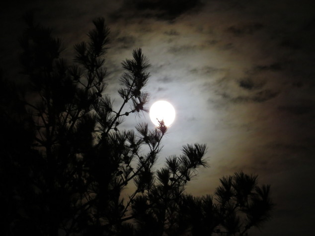 Moon shine on the clouds