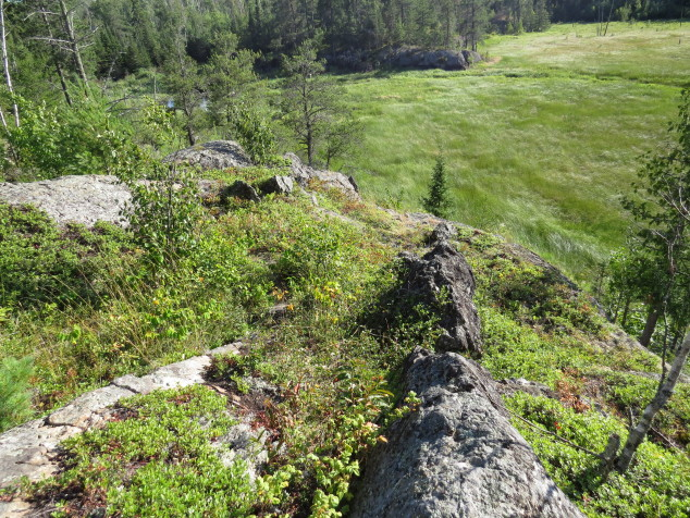 Rock outcrop above the marsh