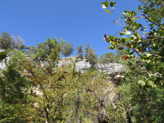 Canyon walls at Hamilton Pool