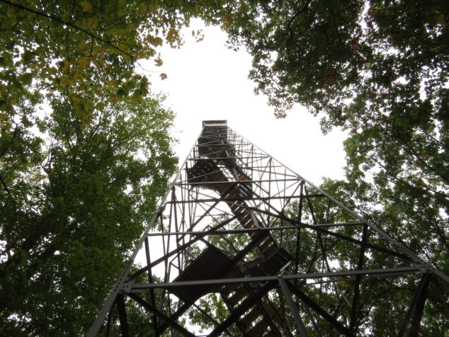 Fire tower at St. Croix State Park